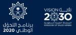 vision 2020-2030